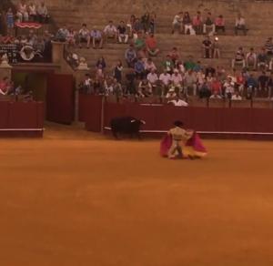 The first matador
