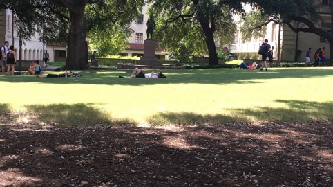 Napping Lawn in 2017 (Confederate Statue in Background)